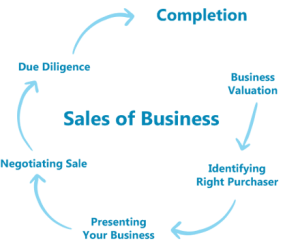 sale of business cycle